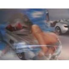 Термосалфетка 43251 3D ДЕВУШКА МАШИНА 25*35 см