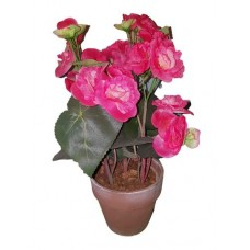 Цветок ДЕКОРАТИВНЫЙ в горшке 16-0090 бегония красная