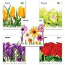 Тетрадь 48 л BRAUBERG ЭКО цветы, 401808, клетка
