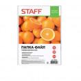 Файл STAFF A4 (комплект 100 шт)  226828
